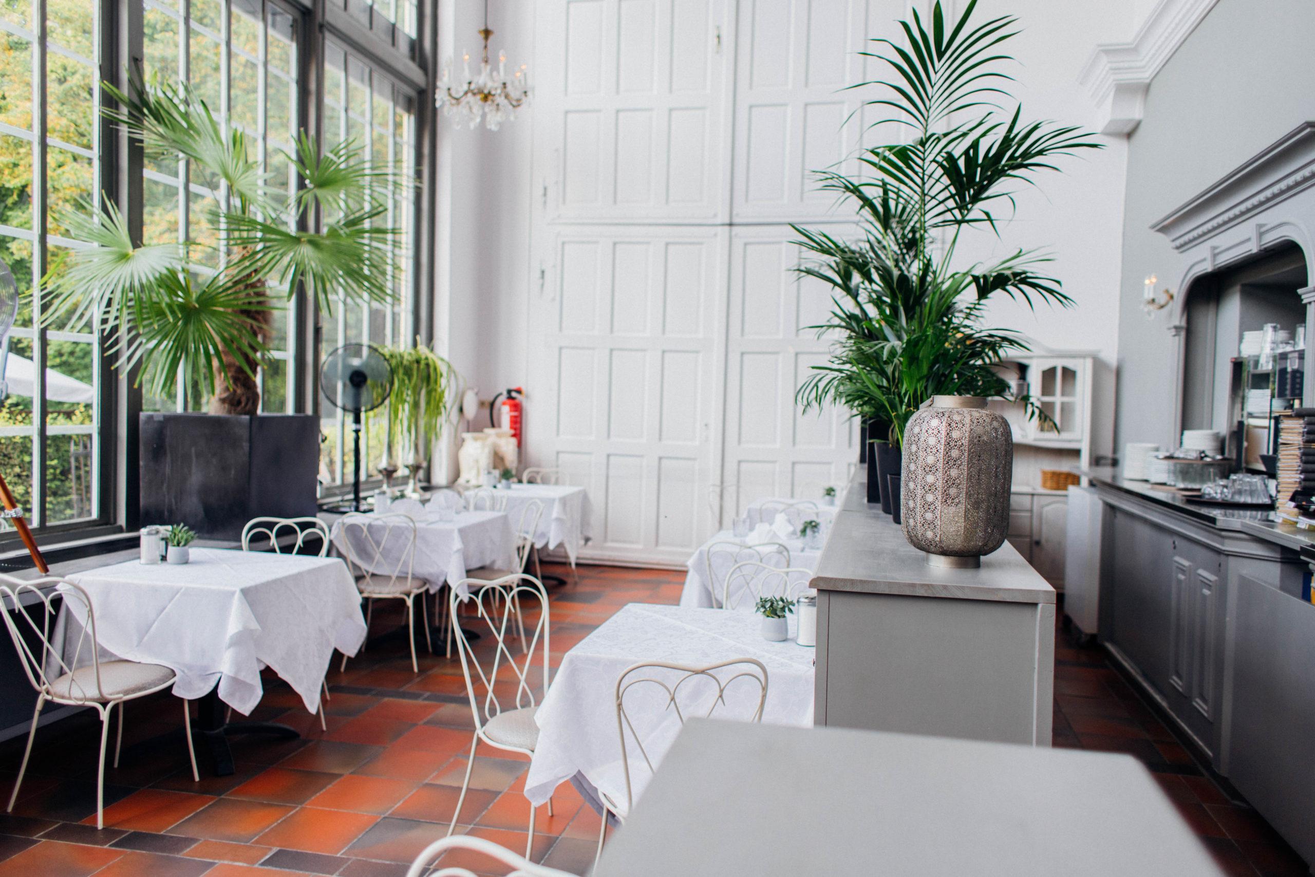 Café Bereich im Palmenhaus