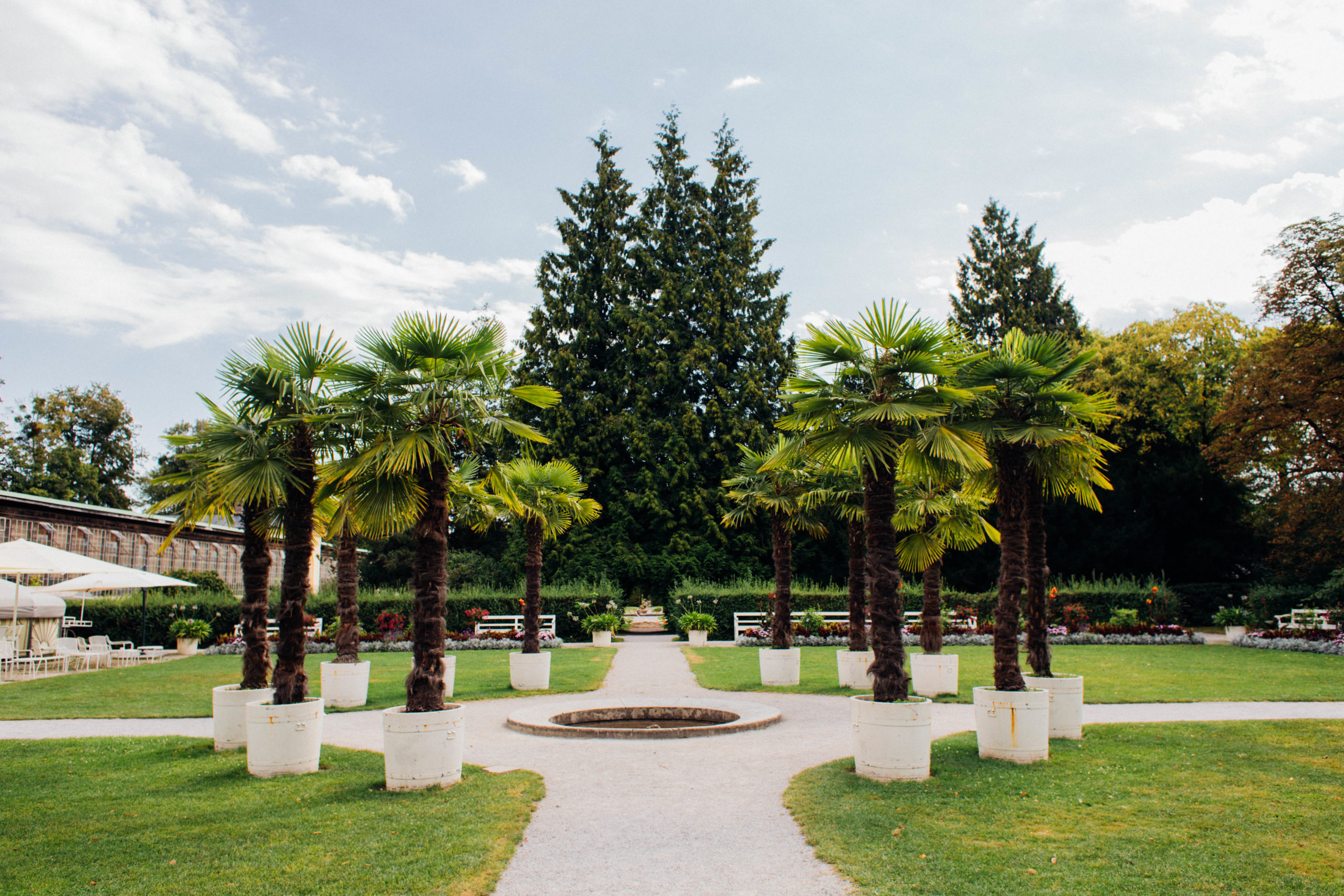 Palmenrondell im Schlosspark